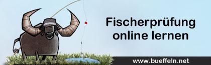 Alle wichtigen Informationen zur Fischereischeinprüfung ✓ Jetzt auch unsere Angelschein APP kostenlos testen, ohne Anmeldung ✓